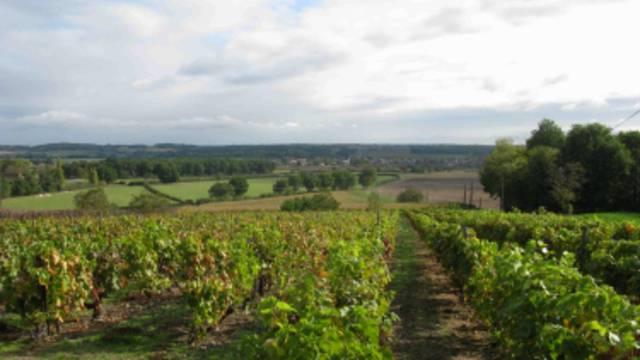 Vicq-sur-Gartempe