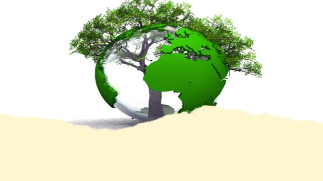 Engagez votre événement dans une démarche de développement durable!