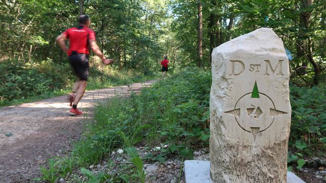 Le chemin de Saint-Martin - Nederlands