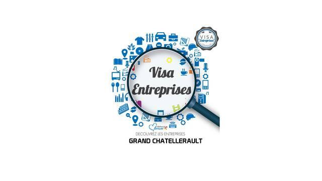 Logo Visa Entreprises