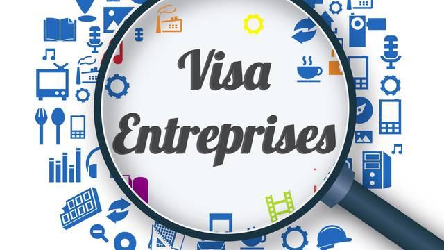 Visa Entreprises