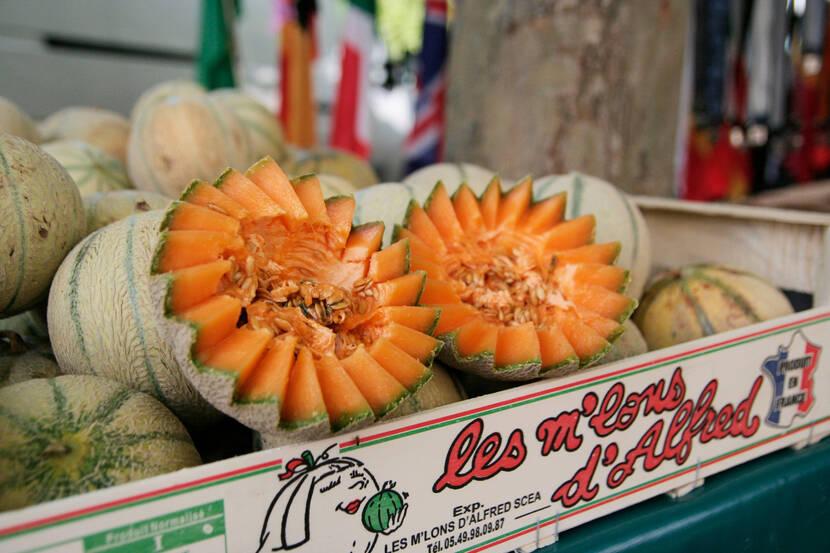 Melon du Poitou